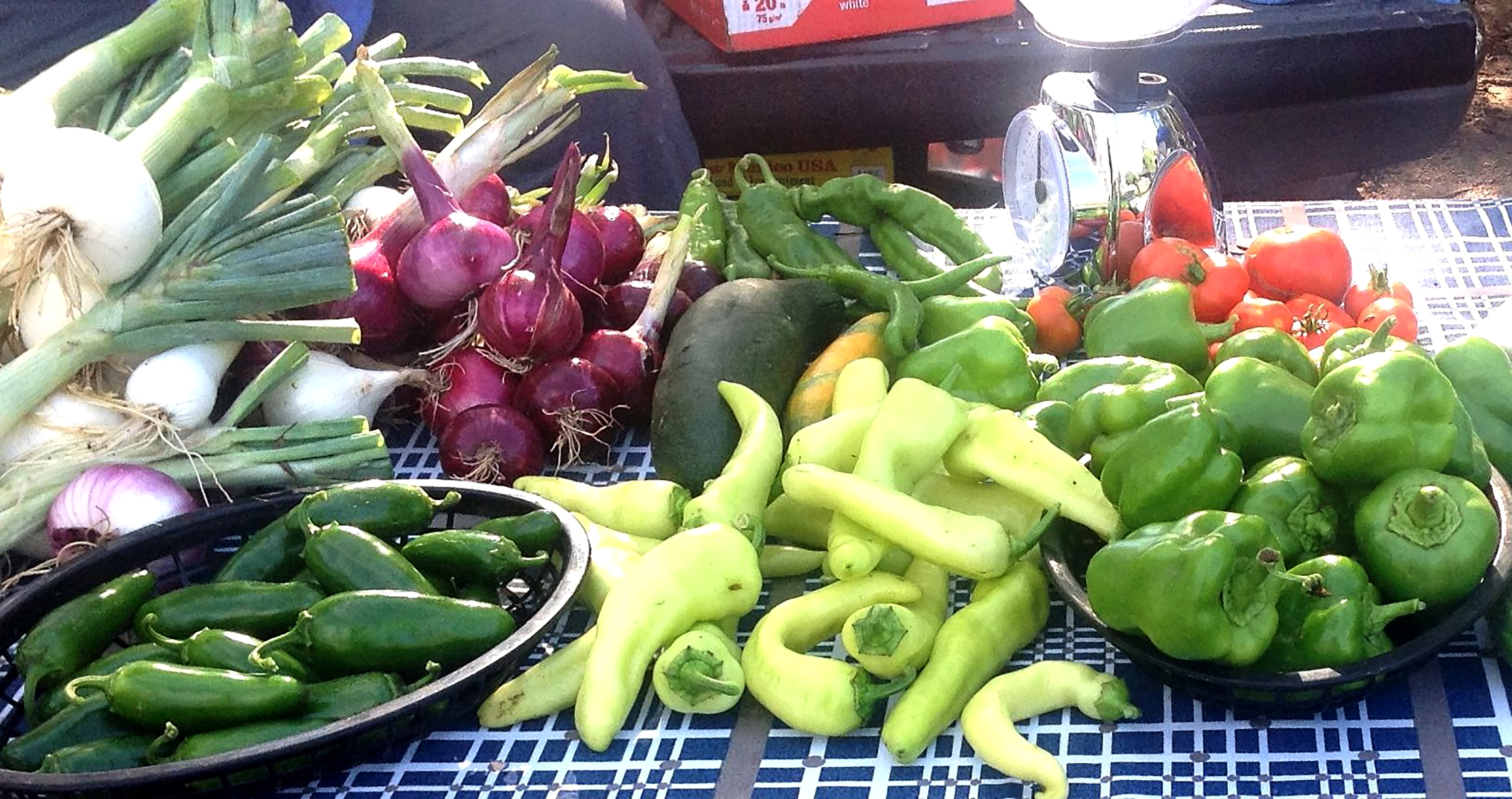 Variety of vegetables on a table